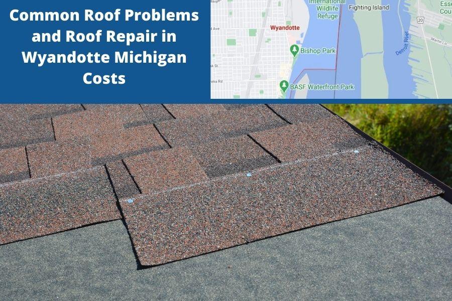 Roof Wyandotte Mi